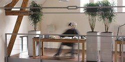 Interna Design - Planten in het interieur